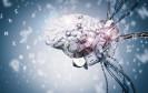 Gehirn für Künstliche Intelligenz