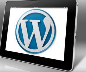 Millionen WordPress-Webseiten gefährdet