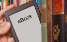 E-Books liegen im Trend. Trotzdem hapert es bei der Nutzung - auch, weil sich jeder Vierte nicht mit den Preisen für das digitale Lesevergnügen anfreunden kann. Das zeigt eine Studie von deals.com.