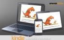 Deutsche Amazon-Kunden erhalten nun auch ohne Download oder Software-Installation Zugriff auf ihre E-Books. Der neue Kindle Cloud Reader startet direkt im Web-Browser.