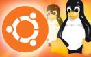 Lokale Fenstermenüs einschalten, Starter-Symbole anpassen, Fenster per Tastatur suchen und mehrere Arbeitsflächen nutzen: Tipps und Tricks zur neuen Ubuntu-Version.