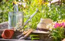 Im Sommer sind viele Menschen am liebsten draußen - und richten dafür den eigenen Garten oder Balkon hübsch her. Doch welche Online-Shops für Gartenbedarf schneiden im Test am besten ab?