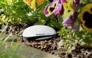Mit dem neuen Pflanzensensor von Koubachi sollen vor allem technikbegeisterte Gartenfans angesprochen werden. Das Gerät ist als Indoor- und Outdoor-Variante erhältlich.