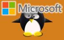 Microsoft und Linux
