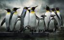 Virenscanner für Linux