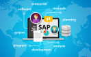 SAP Business IT