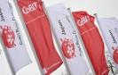 CeBIT-Flagge mit Partnerland Japan