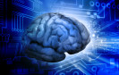 NeuroDialog und NeuroCommerce