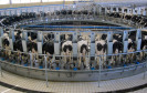 Automatisiertes Melk-System