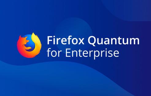 http://com-magazin.de/img/9/5/3/2/3/1/FF-Quantum-for-Enterprise_w492_h312.jpg